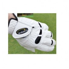 INTECH: CABRETTA GOLF GLOVES for LEFT HANDED GOLFERS: 12 PACK: GLOVE FITS ON RIGHT HAND