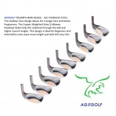 AGXGOLF TRIUMPH IRON HEADS SET TOTAL OF NINE HEADS 3-SW STAINLESS STEEL .370 HOSEL